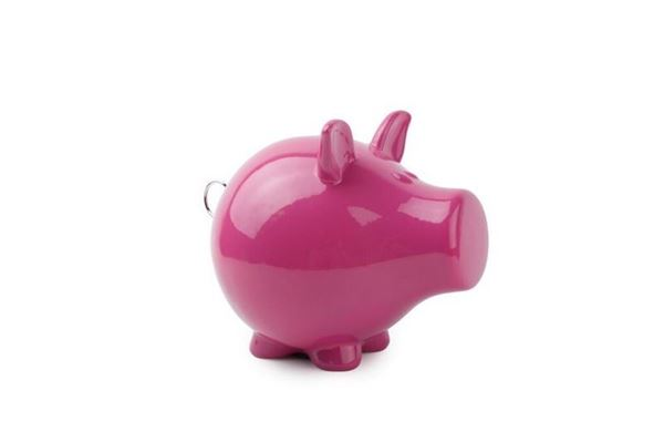 Salt and pepper spaarvarken oink fuchsia