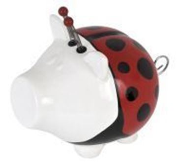 Salt en pepper spaarvarken lady bug