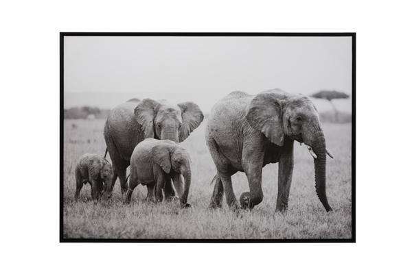 J-line olifanten