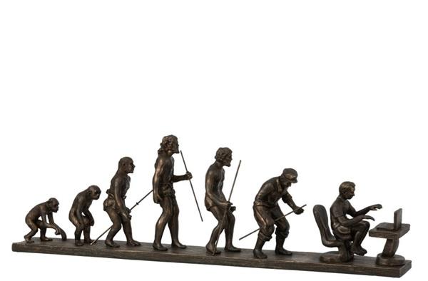 J-line evolutie van de mens