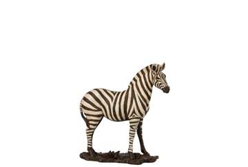 J-line zebra